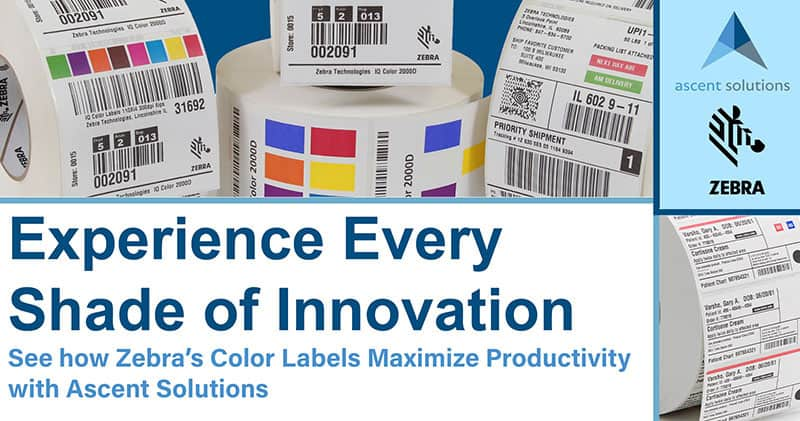 Experience Every Shade of Innovation